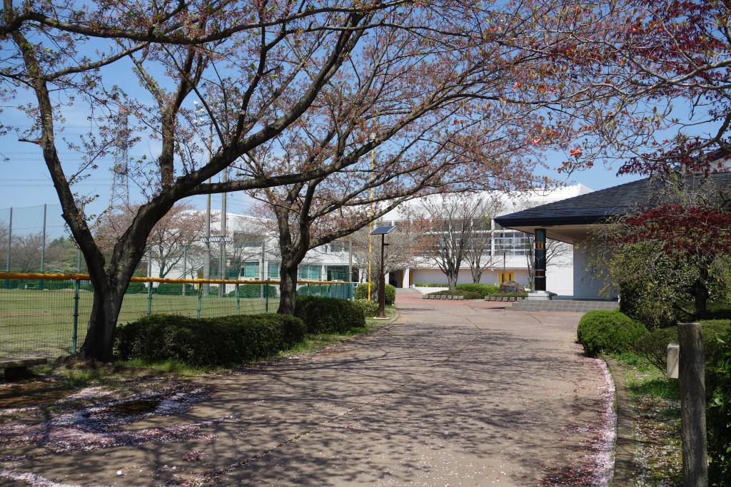 市総合運動公園